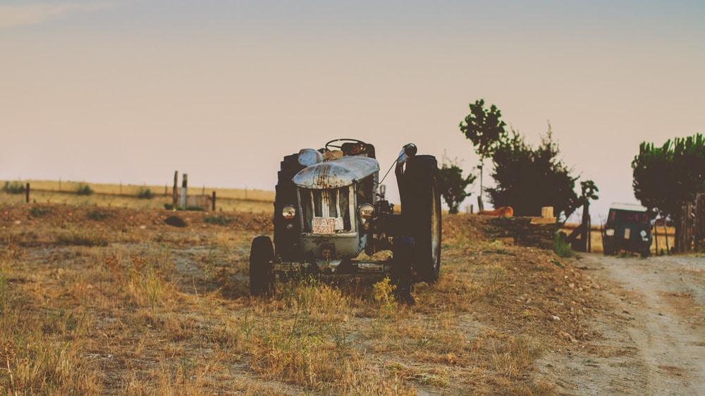 2015-08-18 Silver Ranch- jeffreyherrero -212647